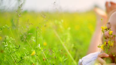 stock-footage--beauty-smiling-girl-lying-on-the-meadow-with-wild-flowers-laughing-and-happy-enjoy-nature