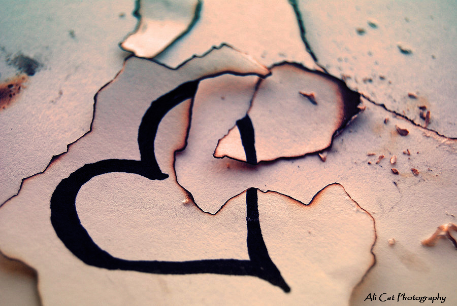 broken_heart_by_alicat2011-d3cg2wx