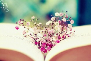 beautiful-book-books-flower-Favim.com-2306004