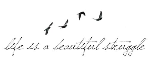 life-is-a-beautiful-struggle1