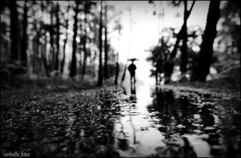 monsoon_photos_15