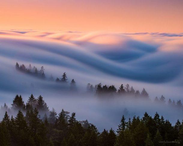 stunning-beautiful-Fog-Waves-photo-shoot-10-800x640
