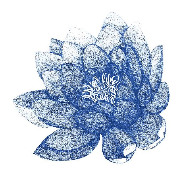 blue-lotus-flower-painting-for-home-decor-jurgita